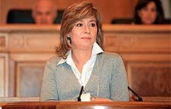 La consejera de Administraciones Públicas, Llanos Castellanos, expuso ayer ante el Pleno de las Cortes de Castilla-La Mancha las novedades que aporta la Ley que establece el Régimen Jurídico Aplicable a la Resolución Administrativa en determinadas materias.