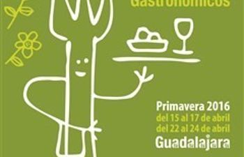 Guadalajara gastron