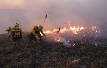Incendio (Foto: MAGRAMA)