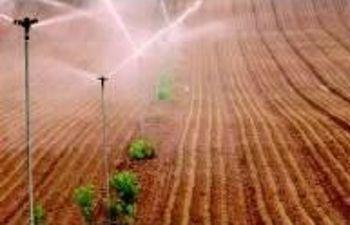 regadíos en campo. Foto: Ministerio de Agricultura, Alimentación y Medio Ambiente