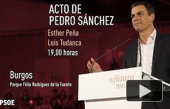 Pedro Sánchez, en la Fiesta de la Rosa del PSOE de Burgos