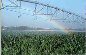 regadíos. Foto: Ministerio de Agricultura, Alimentación y Medio Ambiente