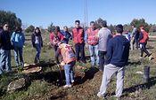 Plantando sabinas y carrascas en Munera.j