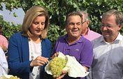 Báñez destaca el papel de Alicante y de su sector agrario en la recuperación