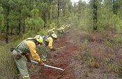 Decálogo básico para la prevención de incendios forestales. Foto: Ministerio de Agricultura, Alimentación y Medio Ambiente