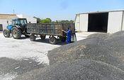 Agricultura dejará fuera a más de mil agricultores y ganaderos que solicitaron ayudas para modernizar sus explotaciones en Castilla-La Mancha