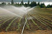 El Ministerio de Agricultura, Alimentación y Medio Ambiente invertirá 10 millones de euros en obras de regadío en Extremadura. Foto: Ministerio de Agricultura, Alimentación y Medio Ambiente
