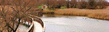 Las Tablas de Daimiel, en la provincia de Ciudad Real, uno de los dos Parque Nacionales de los que goza C-LM.