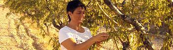 Día Internacional de la Mujer Rural / La Titularidad Compartida se ''queda'' en el BOE y no ''pisa'' el campo. Foto: COAG.