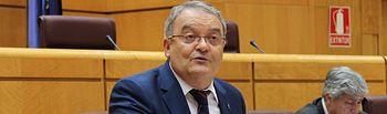 El senador del PP por Guadalajara, Juan Antonio de las Heras durante su intervención en el pleno del Senado de esta tarde