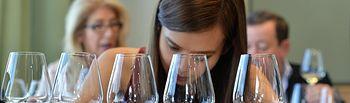 Las ventas de vino DO La Mancha embotellado crecieron más del 18 % en el 2019. Foto: Michel Jolyot