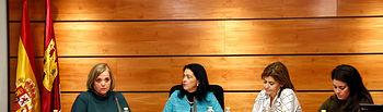 Novillo Comision Violencia Machista 2. Foto: JCCM.