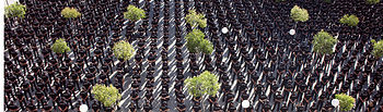 El director de la Policía ha presidido hoy la incorporación de 1.178 nuevos policías en la Comunidad de Madrid. Foto: Ministerio del Interior