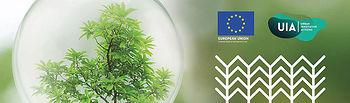 Veinticinco profesores de la UCLM, inmersos en un proyecto de la Unión Europea relacionado con la bioeconomía forestal