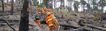 3.000 profesionales trabajan por primera vez los 365 días  del año en la campaña de Incendios Forestales de C-LM