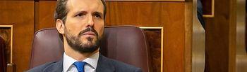 El presidente del PP, Pablo Casado, durante la intervención de Sánchez.