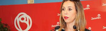 Lucía de Luz, portavoz del PSOE.