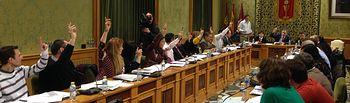 Foto del Pleno.