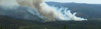Incendio forestal. Foto: Ministerio.