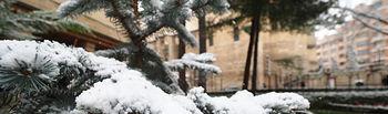 Nieve en Albacete el 20 de enero de 2020. Foto: Manuel Lozano Garcia / La Cerca