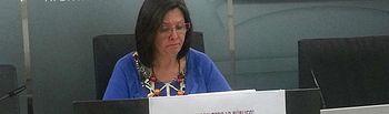 IU presenta moción contra la reforma de la administración local.