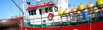 España y Portugal plantean a la Comisión Europea la propuesta de gestión de la pesquería de la sardina atlántica para 2016. Foto: Ministerio de Agricultura, Alimentación y Medio Ambiente