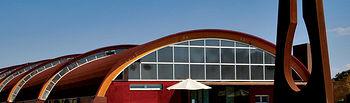 Castilla-La Mancha posee el viñedo más grande del mundo y ya son muchas las bodegas que han sabido aprovecharse de esa fama mundial para ofrecer diversas rutas enológicas. Foto: Vista de la bodega Pago del Vicario, en Ciudad Real.
