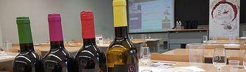 Los vinos DO La Mancha en las aulas.