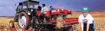 Por Comunidades Autónomas, la que mayor cantidad de hectáreas dedica a este cultivo es Castilla-La Mancha, con más de 200 localidades dedicadas al cultivo del ajo.
