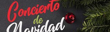 Cartel Concierto Navidad Banda Provincial 2019.