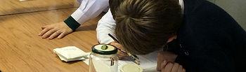 Alumnos preparando disoluciones previas para el crecimiento posterior de cristales en su interior. Foto: UAM