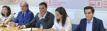 Reunión del Grupo Socialista en la Asamblea de Madrid