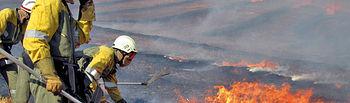 Debido a las intensas lluvias caídas durante el invierno se ha producido gran cantidad de pasto que puede convertirse en combustible propicio para la propagación de incendios.