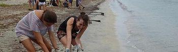 Colaboración limpieza playas. Foto: Ministerio de Agricultura, Alimentación y Medio Ambiente