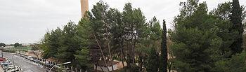 Árboles caídos Fiesta del Árbol de Albacete - 20-04-19
