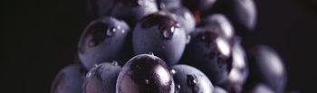 Uvas moradas. Foto: Cooperativas Agro-alimentarias.