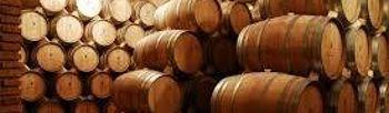 Las nuevas normativas sobre vino deben servir para orientar las producciones hacia la calidad. Foto: ASAJA CLM.