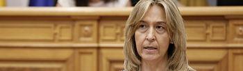 Guarinos, Pleno Cortes CLM.