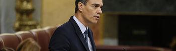 El candidato a la Presidencia del Gobierno, Pedro Sánchez. Foto: David Corral [POVEDANO FOTOGRAFOS]