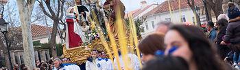 Procesión del Domingo de Ramos en Albacete. Semana Santa 2016.