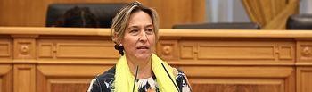 Ana Guarinos, vicepresidenta segunda de las Cortes de Castilla-La Mancha y diputada regional.