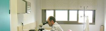 El alergólogo del Complejo Hospitalario de Toledo, Ángel Moral, realizando el contaje de los pólenes.