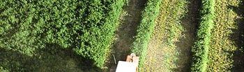 PAC. Foto: Ministerio de Agricultura, Alimentación y Medio Ambiente