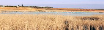 Laguna del Taray de Queros, Toledo.