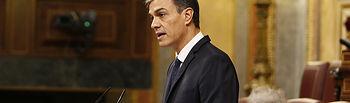 El presidente del Gobierno, Pedro Sánchez, durante su intervención en el Congreso de los Diputados para informar del Consejo Europeo celebrado los días 17 y 18 de octubre