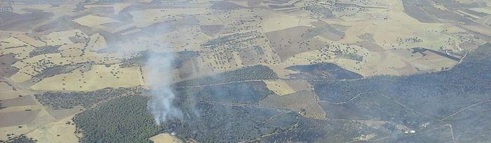 Incendio en Puertollano. Foto: @Plan_INFOCAM