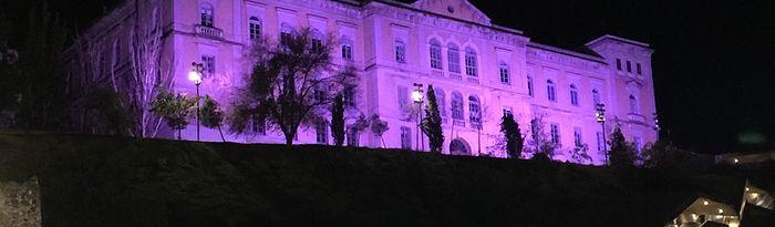 Fachada Diputación iluminada morado (archivo)