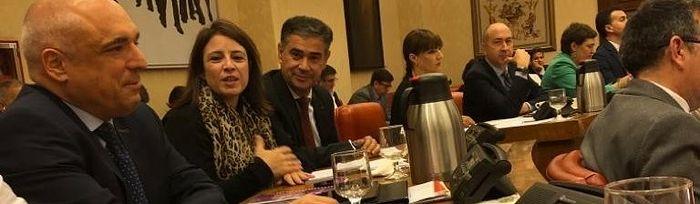 Reunión de la Diputación Permanente.