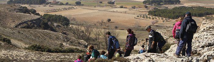 Higueruela. Foto: La Mancha Press_Luis Vizcaíno.