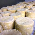 Sala de curación de quesos manchegos.